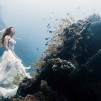 A fantasztikus világ a víz alatt