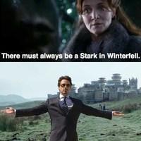 A nap képe: mindig lennie kell egy Starknak Deresben