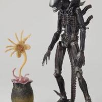 Alien-keltető otthon