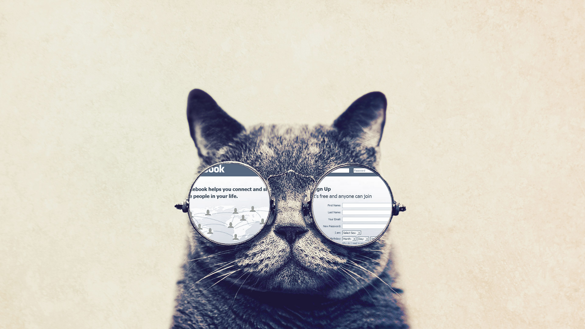 33828_funny_funny_cat_with_big_glasses.jpg