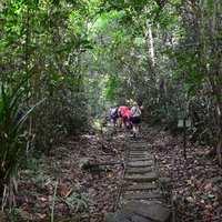 Malajzia: Borneo - 2. resz