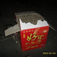 Xin Nian Kuai Le! – Boldog Ujevet Kina!