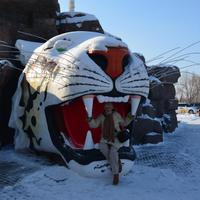 Harbin: Allat parkok ( Siberian Tiger Park and Harbin Polarland)