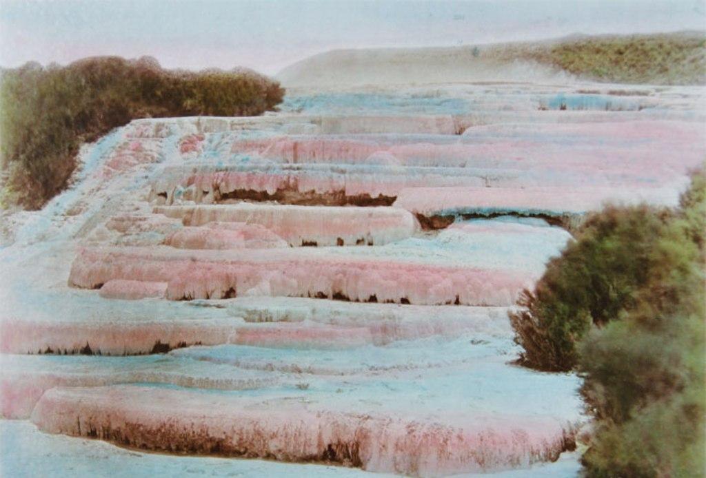 Rozsaszin terasz-festmeny