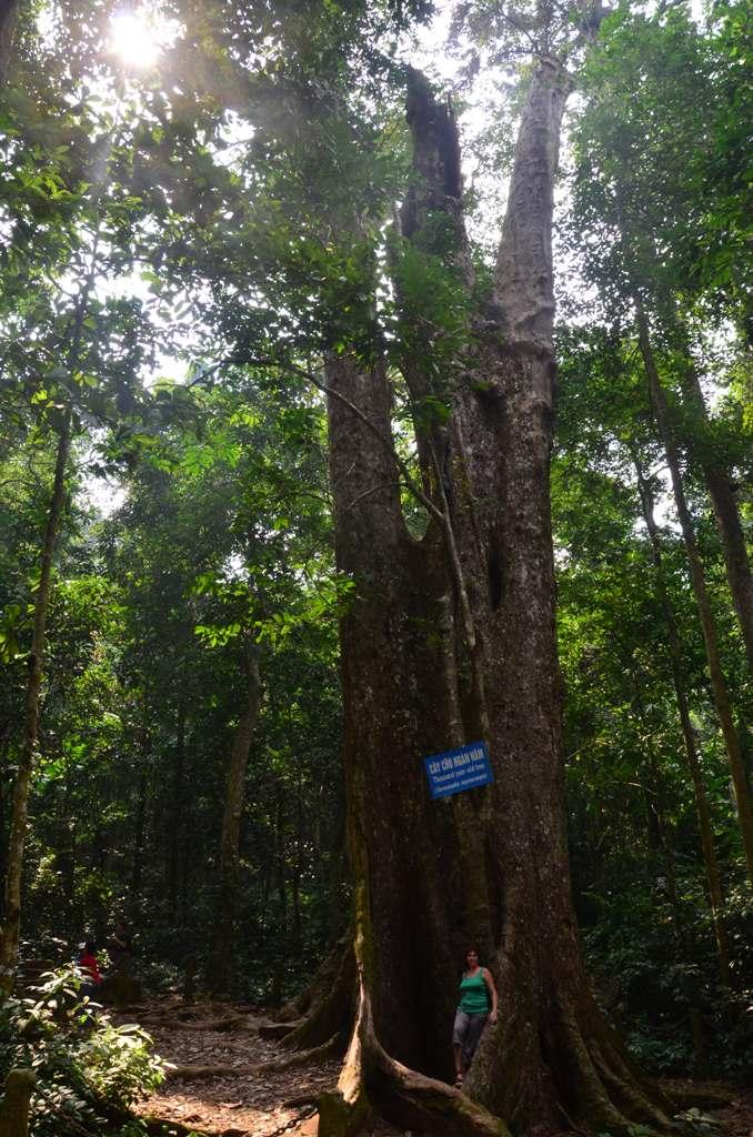 1000 eves fa alatt