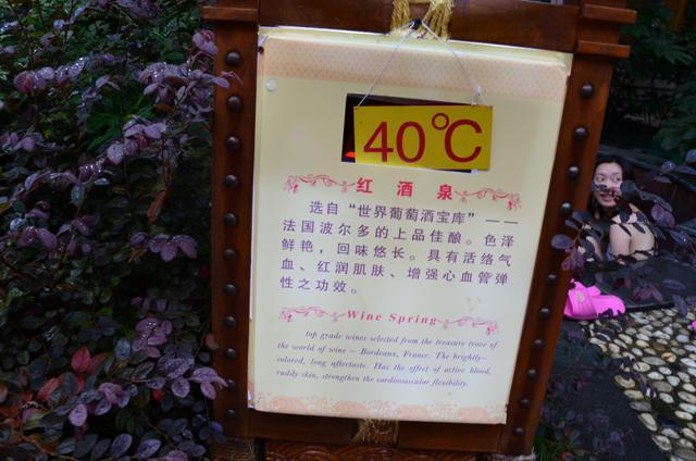 DSC_0312_4.JPG