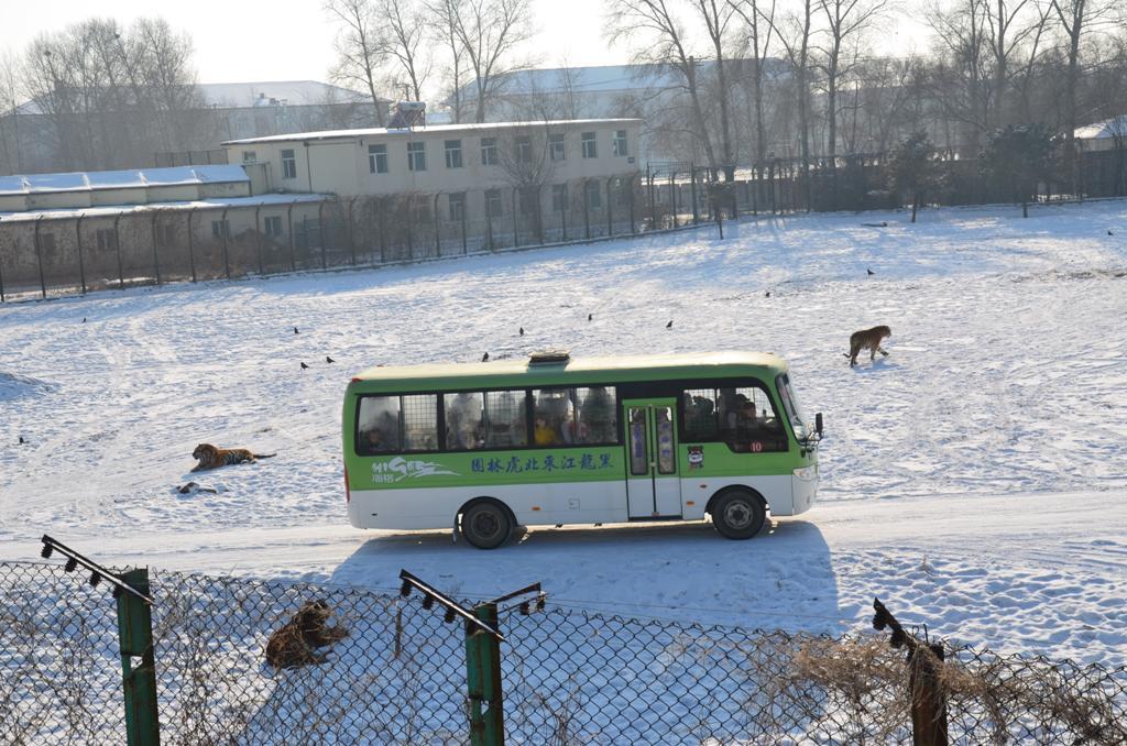 A buszt is korbeveszik, de leginkabb a terepjarobol dobjak ki nekik a kajat