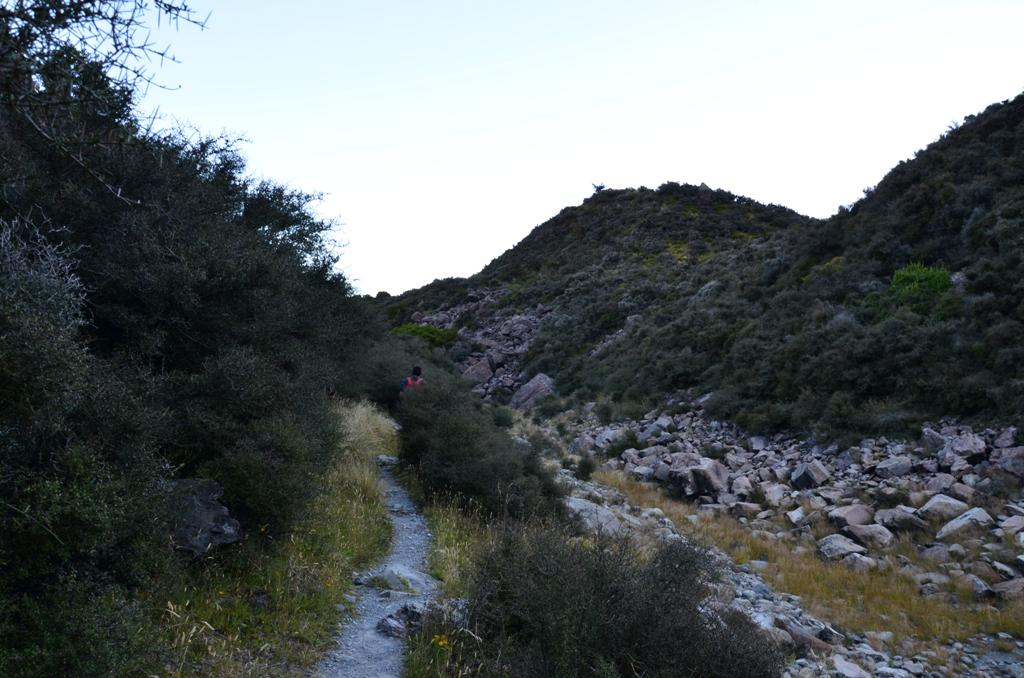 Tuskes-bozotos sik terepen haladtunk egy ideig, vadludak tarsasagaban.