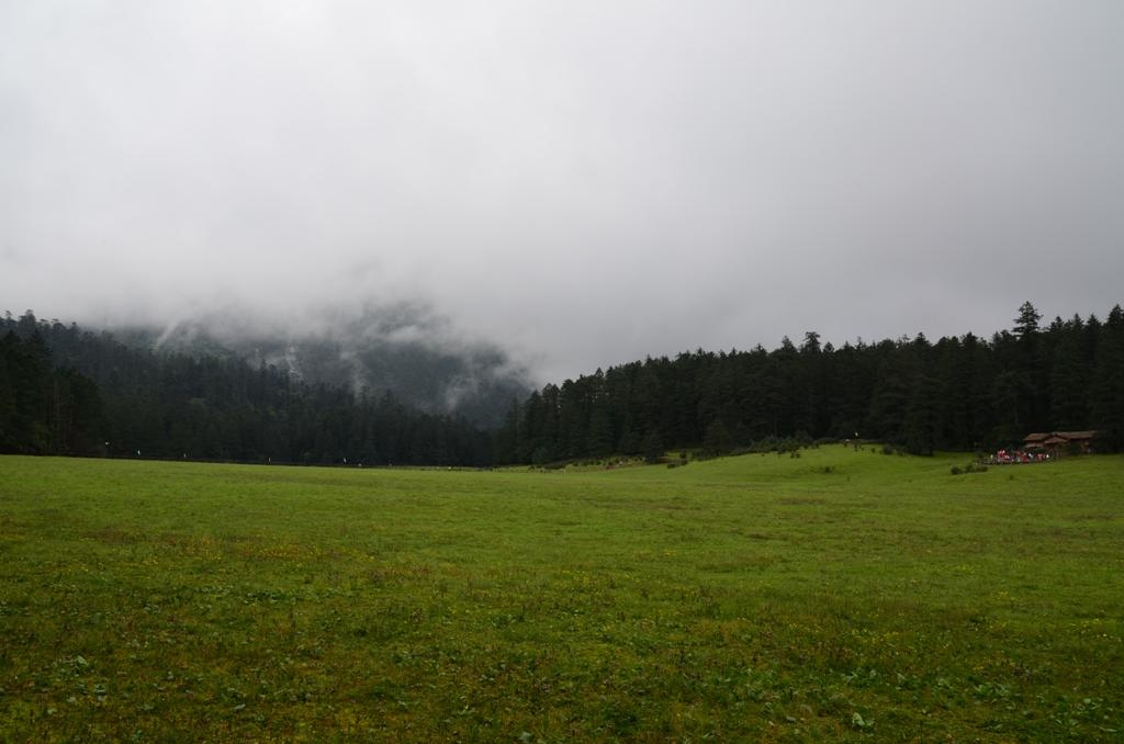 a ret ahol viragok nyilnak tavasszal es nyaron, a tavolban itt is felhok, nem latszik a hegy.