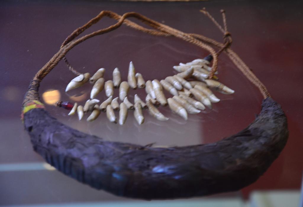 nyaklanc delfin fogakbol