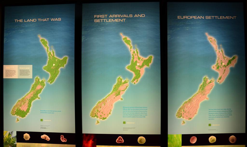 Ez egy nagyon szomoru terkep.<br />800 evvel ezelott a szigetek, 5 %-ka volt legelo, a tobbi esoerdo, vizek es hegyek<br />Ma mar a sziget 51%-ka legelo, eltunt a sok erdo.