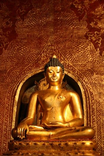 gold-buddha-c-jungle-boy-p.jpg