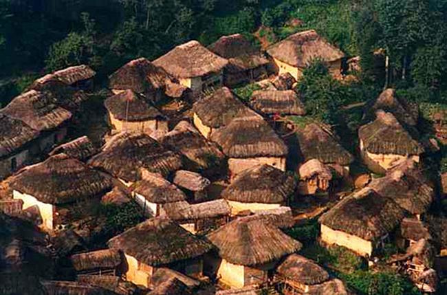 hani-mushroom-house.jpg