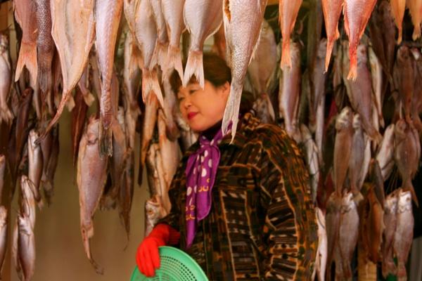 jagalchi-fishmarket-busan.jpg