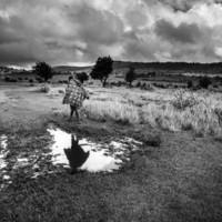 Kiállításajánló: fotósorozat a női