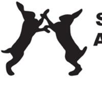 Állatkísérlet-mentes aktivitás: ki érdemli a következő 250 000 fontot?