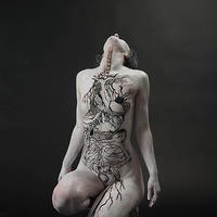 Művészet és anatómia