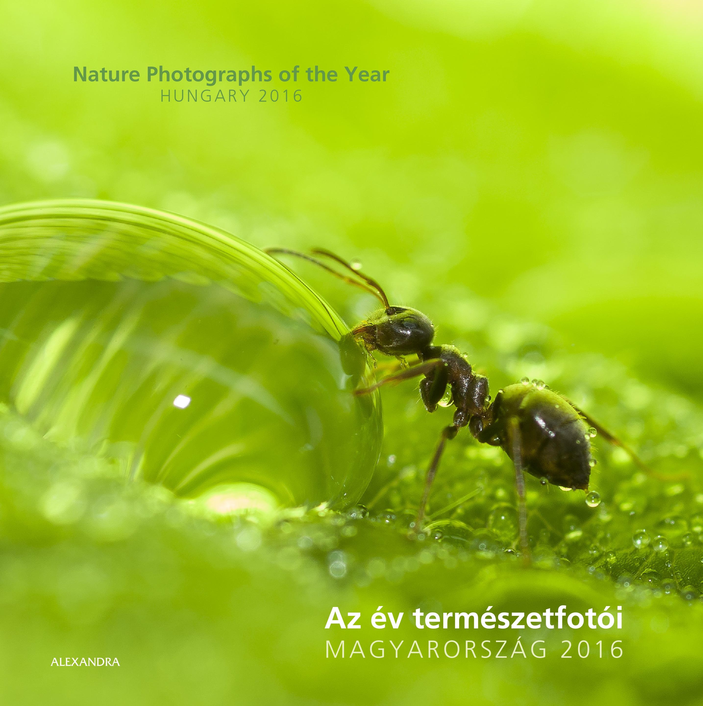 Idén is: Az év terémszetfotósa 2016.