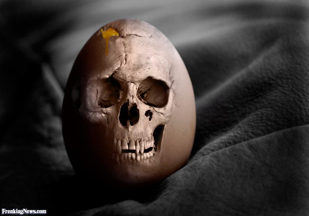 skull-egg-63081.jpg
