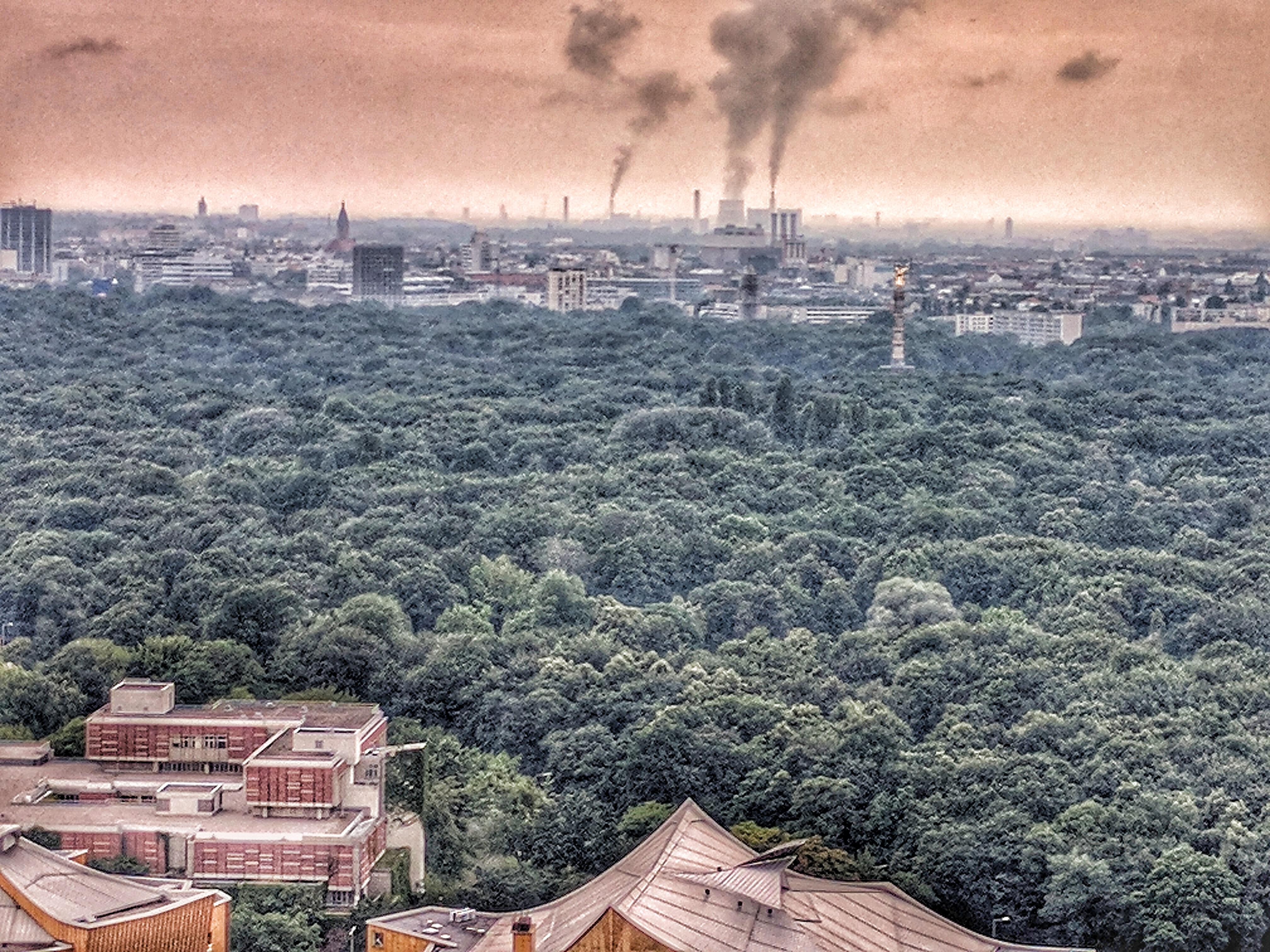 A toronyból a Tiergarten