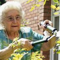 A kertészkedés a legjobb fitness!
