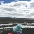 Fonal a világ körül - Kötött és kötetlen Izlandi kalandjaim