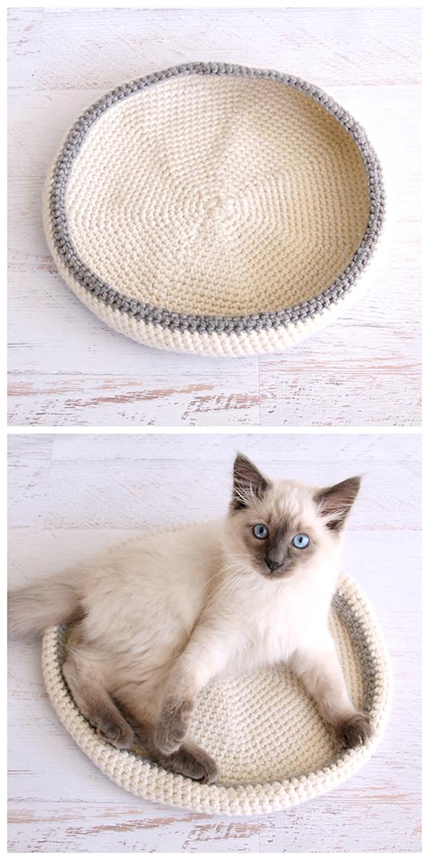macskaágy