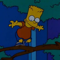 Do The Bartman!