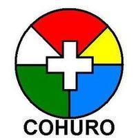 COHURO zászlaja megvan? :o) Fikció!