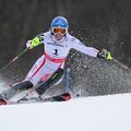Schild révén újabb osztrák arany Garmischban