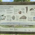 Faxe Kalkbrud - mészkőbánya a város szívében