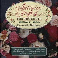 ??DOCX?? Antique Roses For The South. Limite Download normal Stepping Students Lleve hours