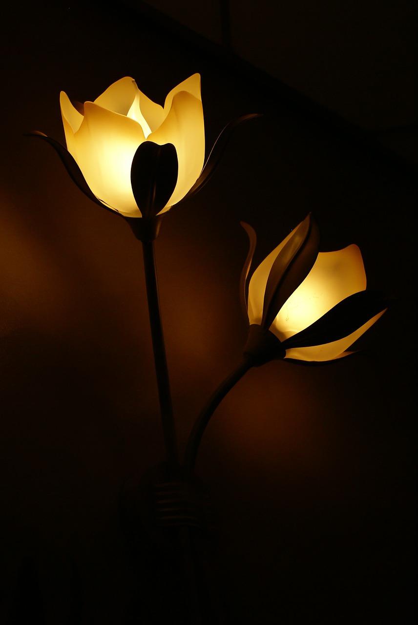 lamp-558122_1280.jpg