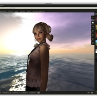 Second Life Viewer 2.0