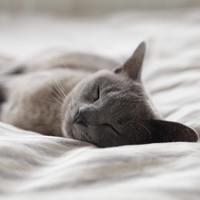 Téged mi akadályoz meg abban, hogy pihenj?