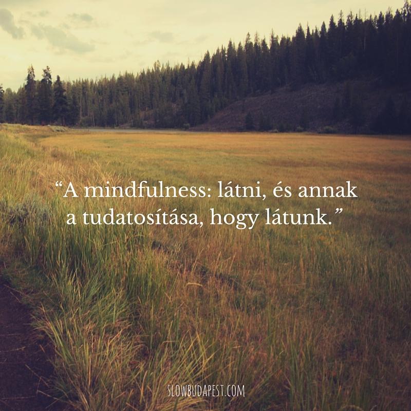_a_mindfulness_latni_es_annak_a_tudatositasa_hogy_latunk.jpg