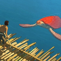 A Ghibli Studió és a Wild Bunch Teknős kalandja