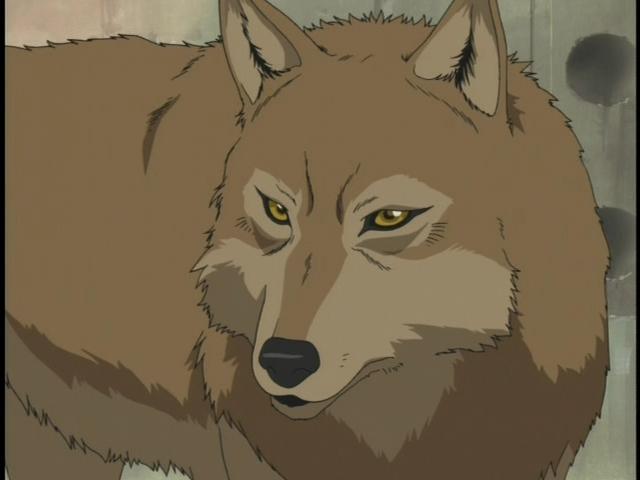 toboe-wolfs-rain-15031916-640-480.jpg