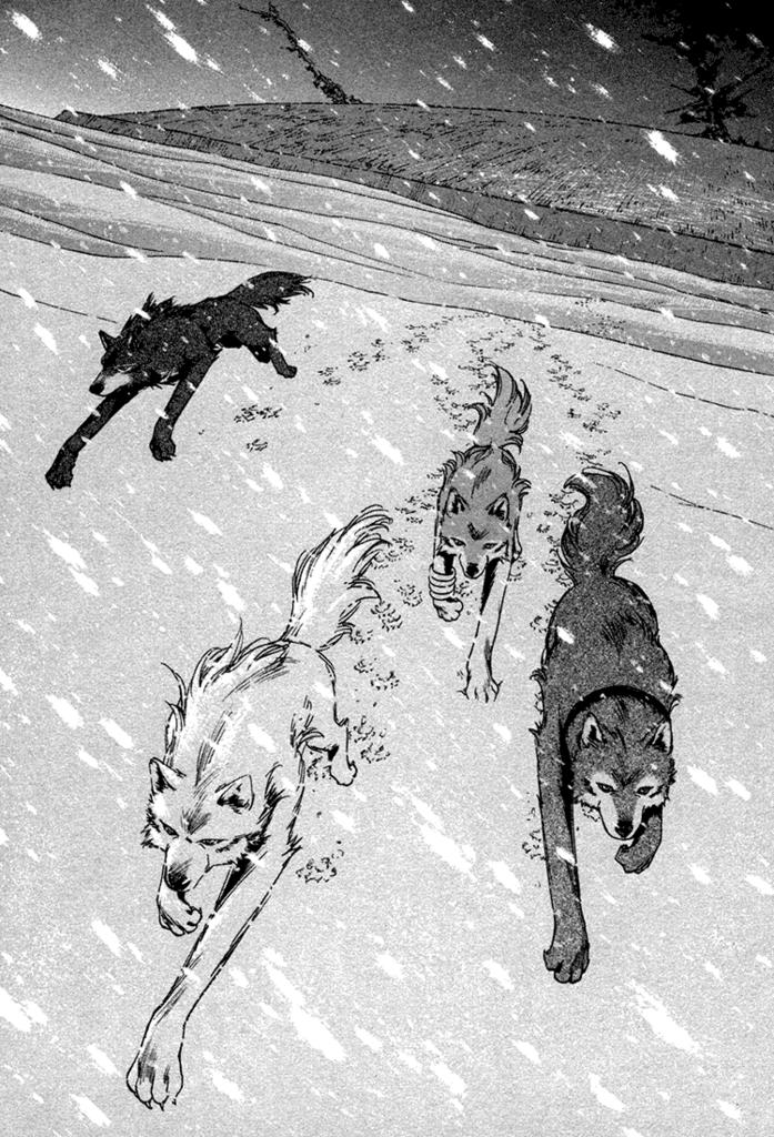wolf-s-rain-manga-wolfs-rain-26131788-697-1024.png