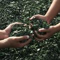 Hulladékcsökkentést és újrahasznosítást!