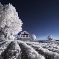 Párásító, páramentesítő, légtisztító – mégis melyikre van szükségem télen?