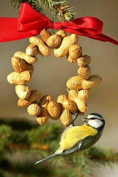 Földimogyoró füzér drótra fűzve, aminek a madarak is örülni fognak ennek a dekorációs elemnek.