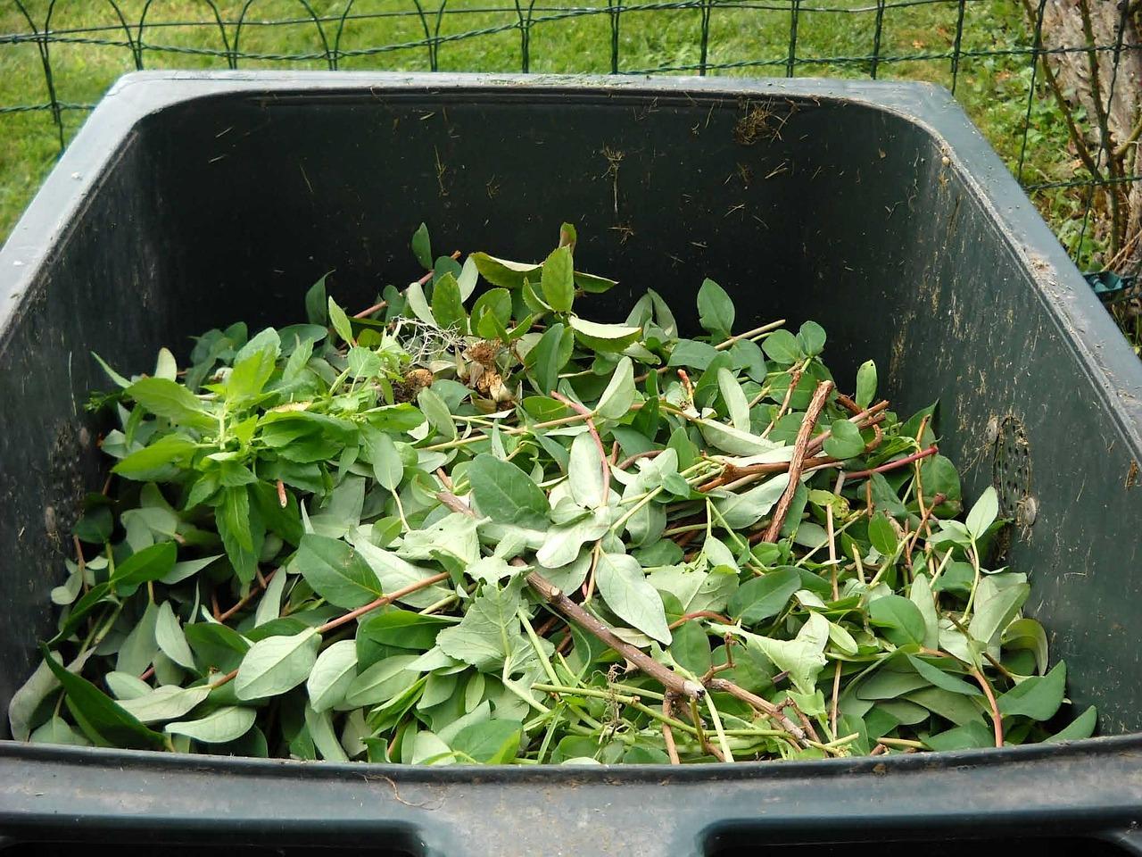 green-waste-486011_1280.jpg