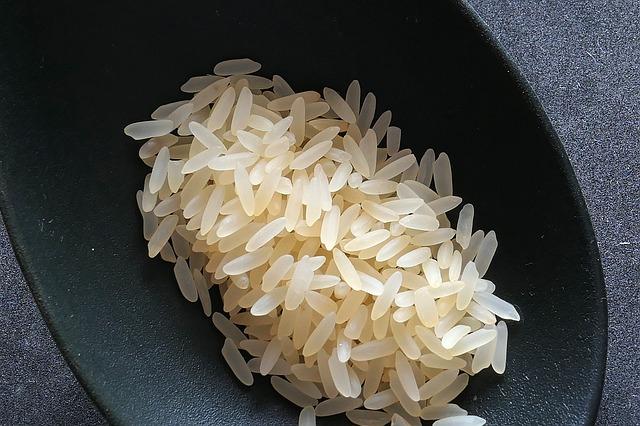 rice-2294365_640.jpg
