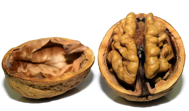 walnut-3072681_640.jpg
