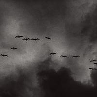 Gyűlnek a sötét felhők