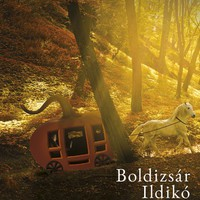 Könyvkritika: Boldizsár Ildikó: Hamupipőke Facebook-profilja (2018)