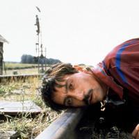 Macska-jaj / Crna macka, beli macor (1998)