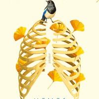 Könyvkritika: Han Kang: Nemes teremtmények (2018)