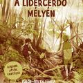 Könyvkritika: Bojti Anna: A Lidércerdő mélyén (2020) és Éjszaka az állatkertben (2019)